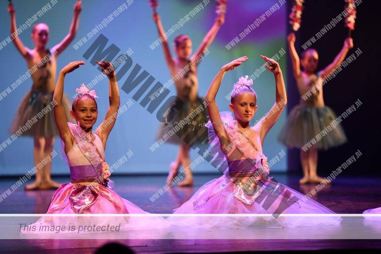 balletles Moving Harmony
